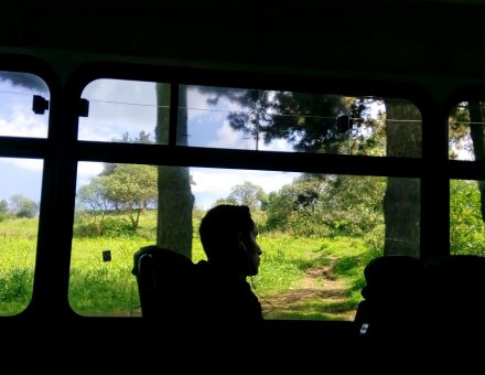 Viaje al sur profundo de la Ciudad de México
