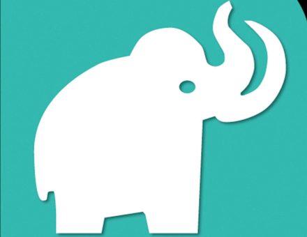 Los mamuts del Metro. Cuando los fósiles hablan